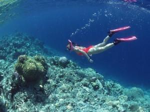 [Ha Long Travel] Scuba-Diving in Halong Bay