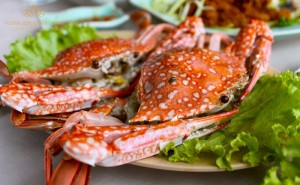 [Ha Long Specialty]  Swimming Crab- A must-enjoy food in Ha Long