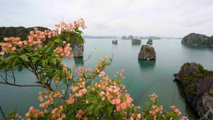 Ha-Long-Bay- Worldbays (3)
